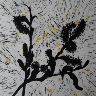 catkins-cropped